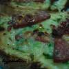 Kahvaltı Sabahı Pizzası